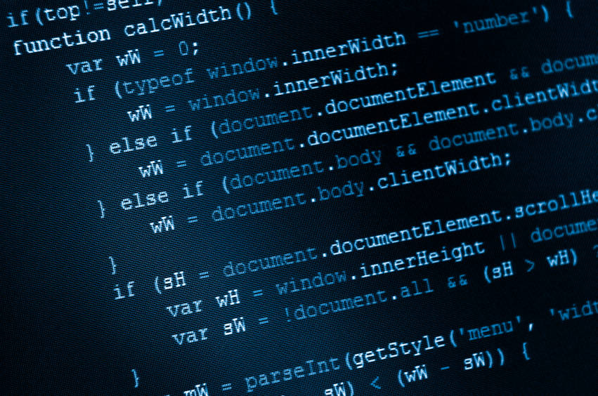 web design and custom programming database management